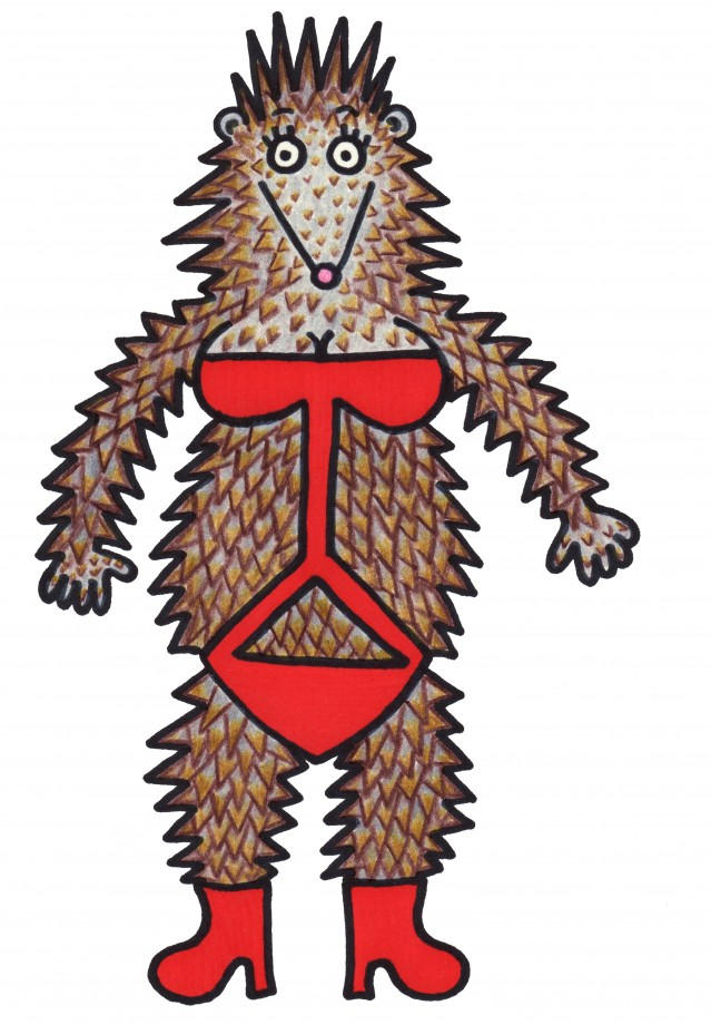 porcupine bathing suit